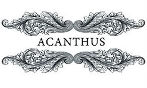Acanthus by Alison Davies